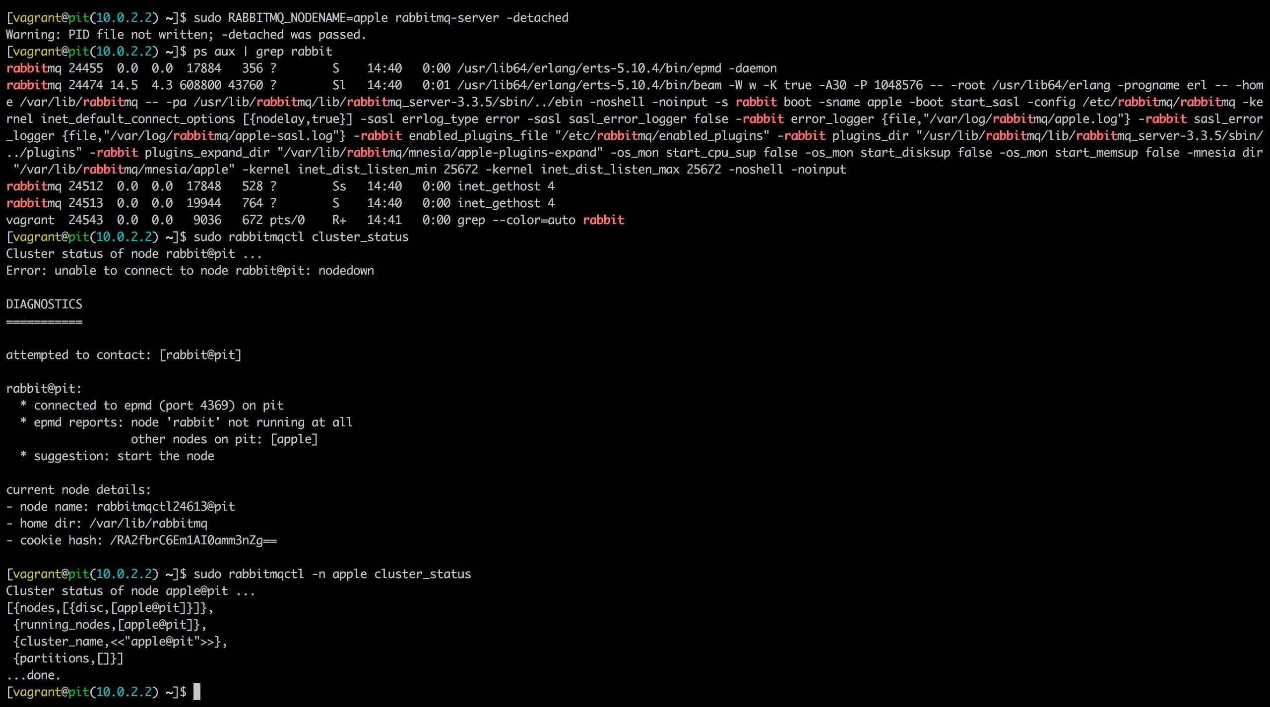 apple としてrabbitmq nodeを立ち上げる